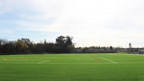 A Complex Relationship: Sports And The Environment - Turf Fields