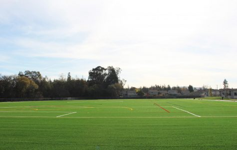 A Complex Relationship: Sports And The Environment – Turf Fields